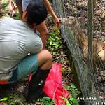 https://roadlesstraveled.smugmug.com/Website-Photos/Website-Galleries/Amor-Por-Los-Animales/i-MW5CB36