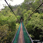 https://roadlesstraveled.smugmug.com/Website-Photos/Website-Galleries/Amor-Por-Los-Animales/i-fkhctbv