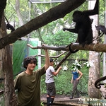 https://roadlesstraveled.smugmug.com/Website-Photos/Website-Galleries/Amor-Por-Los-Animales/i-nZ6fgjT