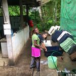 https://roadlesstraveled.smugmug.com/Website-Photos/Website-Galleries/Amor-Por-Los-Animales/i-pJLx7Mq