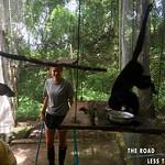 https://roadlesstraveled.smugmug.com/Website-Photos/Website-Galleries/Amor-Por-Los-Animales/i-pKqNDXb