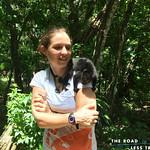 https://roadlesstraveled.smugmug.com/Website-Photos/Website-Galleries/Amor-Por-Los-Animales/i-z4HZGgs