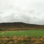 https://roadlesstraveled.smugmug.com/Website-Photos/Website-Galleries/Iceland/i-FRQf32T