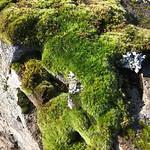 https://roadlesstraveled.smugmug.com/Website-Photos/Website-Galleries/Iceland/i-xrtfvvv