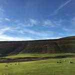 https://roadlesstraveled.smugmug.com/Website-Photos/Website-Galleries/Iceland/i-zJTLNCf