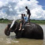 https://roadlesstraveled.smugmug.com/Website-Photos/Website-Galleries/Nepal/i-4Xk3VWr
