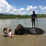 https://roadlesstraveled.smugmug.com/Website-Photos/Website-Galleries/Nepal/i-PqzLNvW