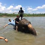 https://roadlesstraveled.smugmug.com/Website-Photos/Website-Galleries/Nepal/i-cw3tkBb