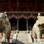 https://roadlesstraveled.smugmug.com/Website-Photos/Website-Galleries/Nepal/i-tQCqTLh