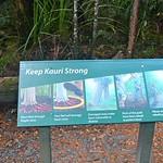 https://roadlesstraveled.smugmug.com/Website-Photos/Website-Galleries/New-Zealand/i-7fhZSsx