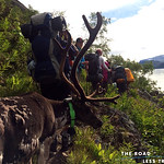 https://roadlesstraveled.smugmug.com/Website-Photos/Website-Galleries/Norway-Footsteps-of-Giants/i-QqDf77C