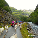 https://roadlesstraveled.smugmug.com/Website-Photos/Website-Galleries/Norway-Footsteps-of-Giants/i-RDnsnRg