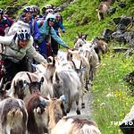 https://roadlesstraveled.smugmug.com/Website-Photos/Website-Galleries/Norway-Footsteps-of-Giants/i-XQPqvHN