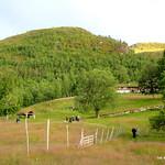 https://roadlesstraveled.smugmug.com/Website-Photos/Website-Galleries/Norway-Footsteps-of-Giants/i-bKx6hW7