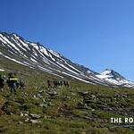 https://roadlesstraveled.smugmug.com/Website-Photos/Website-Galleries/Norway-Footsteps-of-Giants/i-sc7ZDp5