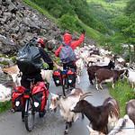 https://roadlesstraveled.smugmug.com/Website-Photos/Website-Galleries/Norway-Footsteps-of-Giants/i-wcwJjv4