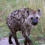 https://roadlesstraveled.smugmug.com/Website-Photos/Website-Galleries/Ross-uganda/i-bw9mzwG