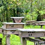 https://roadlesstraveled.smugmug.com/Website-Photos/Website-Galleries/Ross-uganda/i-mS7qKmJ