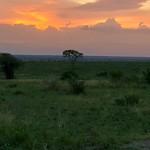 https://roadlesstraveled.smugmug.com/Website-Photos/Website-Galleries/Ross-uganda/i-mzVjhgv