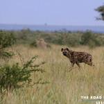 https://roadlesstraveled.smugmug.com/Website-Photos/Website-Galleries/Ross-uganda/i-pDV99F7