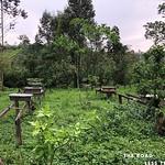 https://roadlesstraveled.smugmug.com/Website-Photos/Website-Galleries/Ross-uganda/i-r29Kpwm