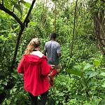https://roadlesstraveled.smugmug.com/Website-Photos/Website-Galleries/Ross-uganda/i-rms4x4G