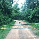 https://roadlesstraveled.smugmug.com/Website-Photos/Website-Galleries/Ross-uganda/i-z5r8rSP