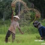 https://roadlesstraveled.smugmug.com/Website-Photos/Website-Galleries/Thailand/i-2vNmvWW