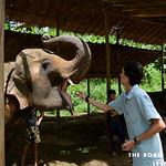 https://roadlesstraveled.smugmug.com/Website-Photos/Website-Galleries/Thailand/i-5mktQqT