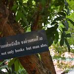 https://roadlesstraveled.smugmug.com/Website-Photos/Website-Galleries/Thailand/i-8RPq9ZK
