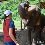 https://roadlesstraveled.smugmug.com/Website-Photos/Website-Galleries/Thailand/i-K8p7ZHg