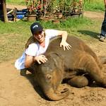 https://roadlesstraveled.smugmug.com/Website-Photos/Website-Galleries/Thailand/i-Mr859G3