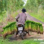 https://roadlesstraveled.smugmug.com/Website-Photos/Website-Galleries/Thailand/i-NjgXCwP