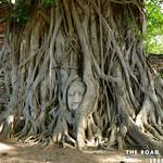 https://roadlesstraveled.smugmug.com/Website-Photos/Website-Galleries/Thailand/i-Nt9ZgNF
