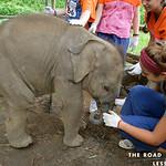 https://roadlesstraveled.smugmug.com/Website-Photos/Website-Galleries/Thailand/i-QsDxmxw
