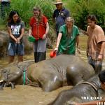 https://roadlesstraveled.smugmug.com/Website-Photos/Website-Galleries/Thailand/i-RGsHB9K