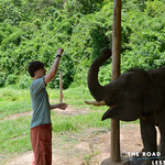 https://roadlesstraveled.smugmug.com/Website-Photos/Website-Galleries/Thailand/i-S95N3vt