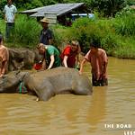 https://roadlesstraveled.smugmug.com/Website-Photos/Website-Galleries/Thailand/i-bD9xDqr