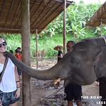 https://roadlesstraveled.smugmug.com/Website-Photos/Website-Galleries/Thailand/i-hR9Sm9x