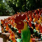 https://roadlesstraveled.smugmug.com/Website-Photos/Website-Galleries/Thailand/i-nPB7b8H