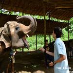 https://roadlesstraveled.smugmug.com/Website-Photos/Website-Galleries/Thailand/i-w2xgt6F