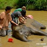 https://roadlesstraveled.smugmug.com/Website-Photos/Website-Galleries/Thailand/i-wXHnZWF