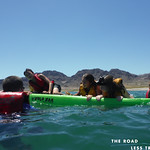 https://roadlesstraveled.smugmug.com/Website-Photos/Website-Galleries/Utah-Unleashed/i-8BRffbx