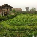 https://roadlesstraveled.smugmug.com/Website-Photos/Website-Galleries/Vietnam/i-4WWKbrJ