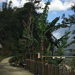 https://roadlesstraveled.smugmug.com/Website-Photos/Website-Galleries/Vietnam/i-4ZJGqPC