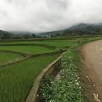 https://roadlesstraveled.smugmug.com/Website-Photos/Website-Galleries/Vietnam/i-5G8gC5r