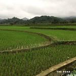 https://roadlesstraveled.smugmug.com/Website-Photos/Website-Galleries/Vietnam/i-8XnVLSb
