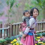 https://roadlesstraveled.smugmug.com/Website-Photos/Website-Galleries/Vietnam/i-HR6CZpP