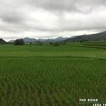 https://roadlesstraveled.smugmug.com/Website-Photos/Website-Galleries/Vietnam/i-NQWSpKw