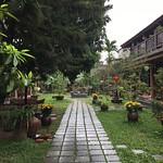 https://roadlesstraveled.smugmug.com/Website-Photos/Website-Galleries/Vietnam/i-Vz97C8v